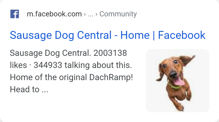 Example title tag in a search result.